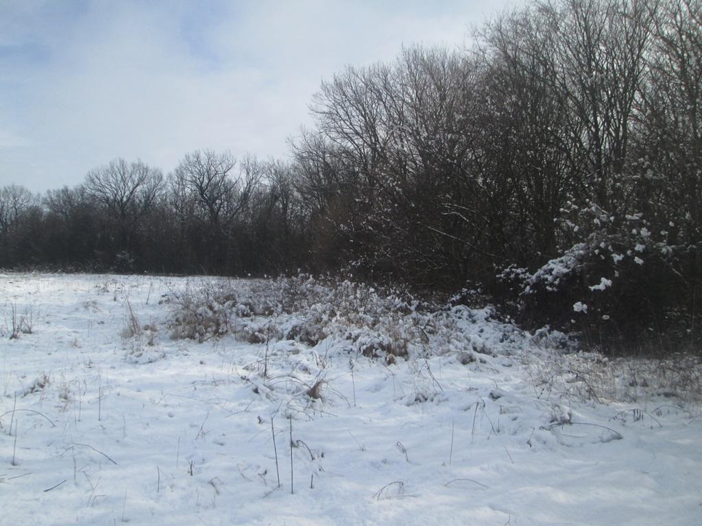 снег весной фото (106)