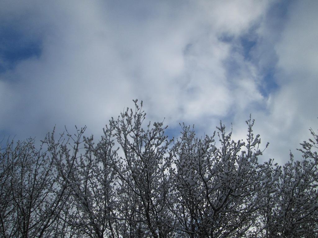 снег весной фото (22)