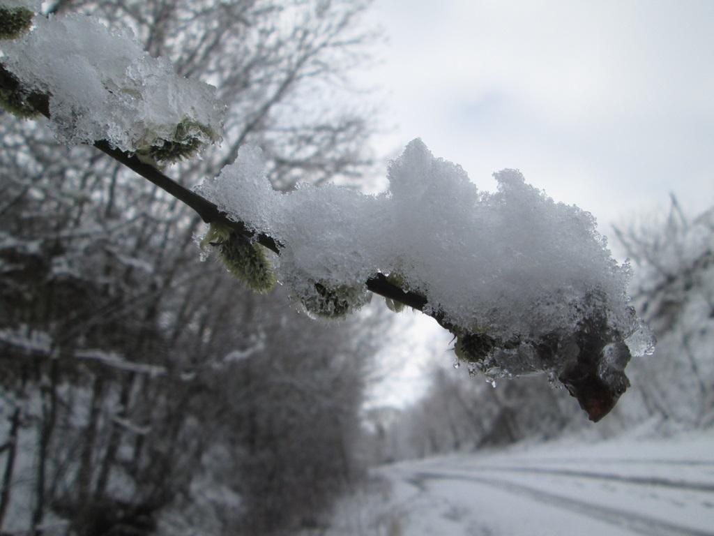 снег весной фото (27)
