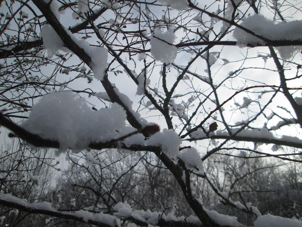 снег весной фото (37)