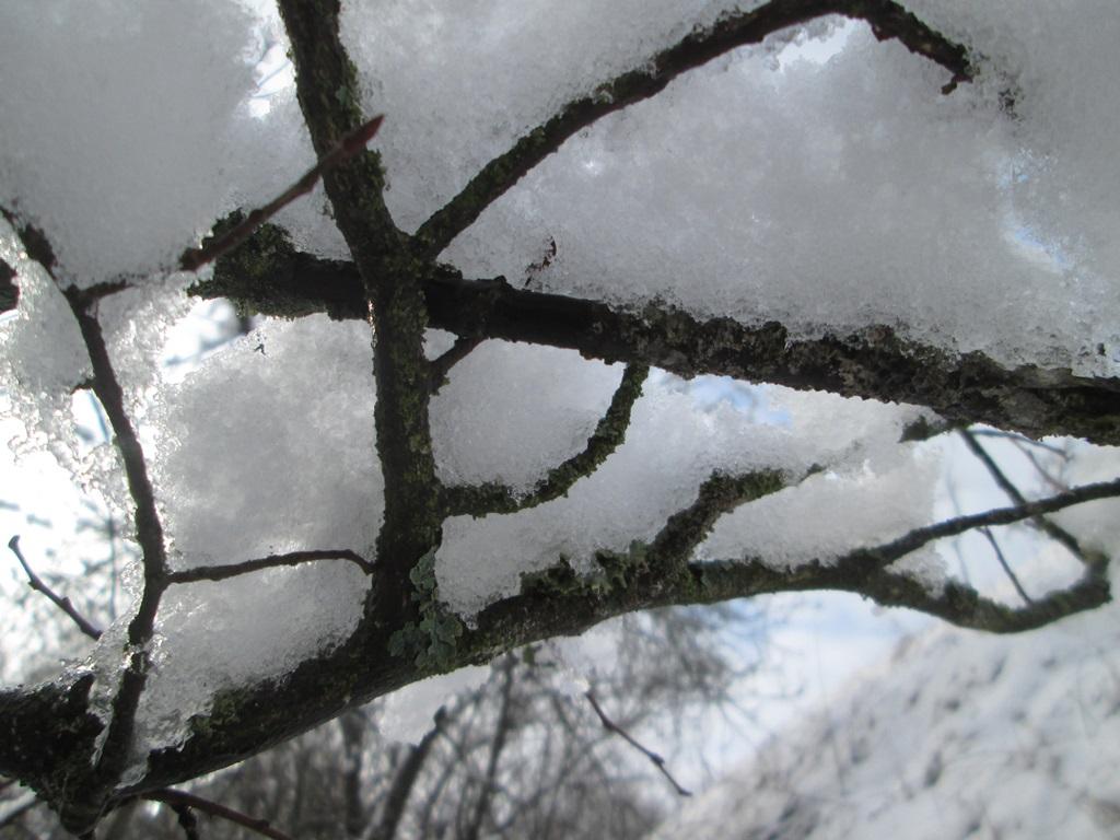 снег весной фото (38)