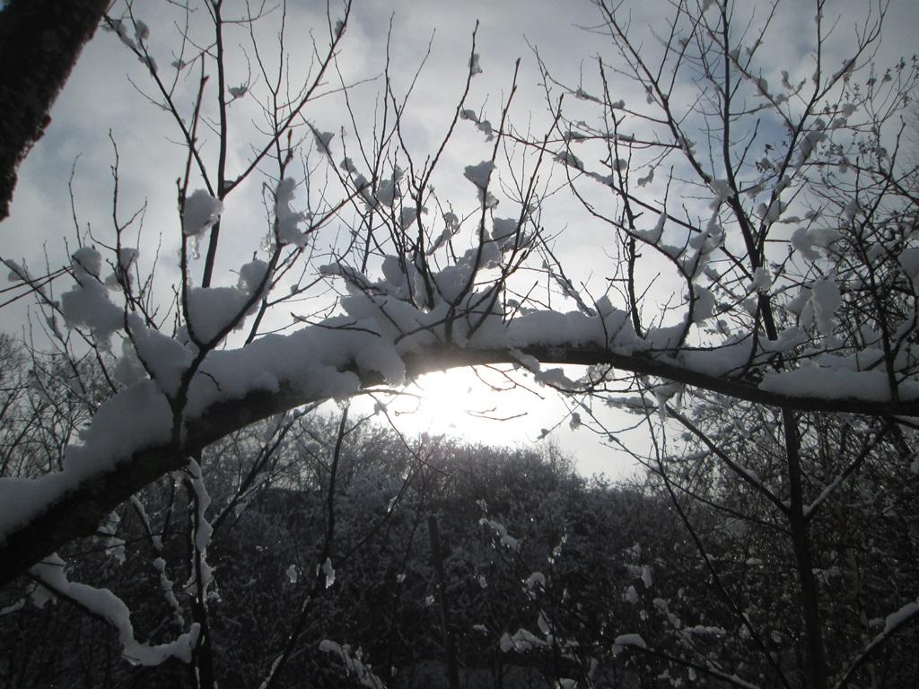 снег весной фото (39)