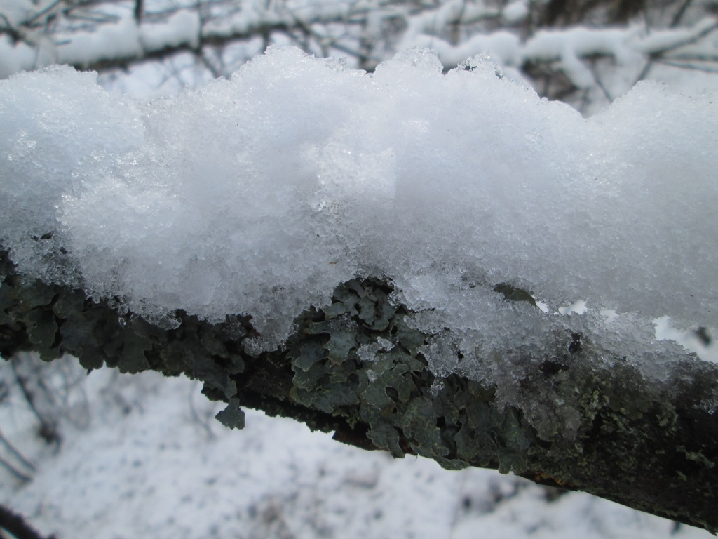 снег весной фото (50)