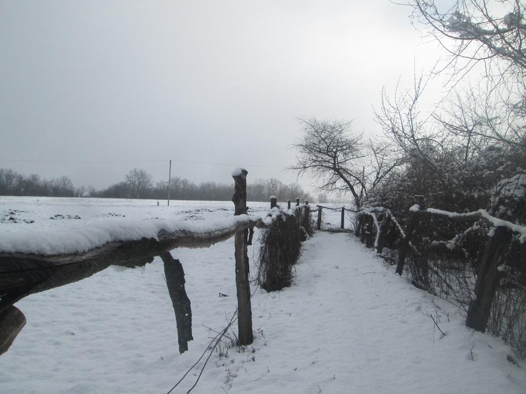 снег весной фото (85)
