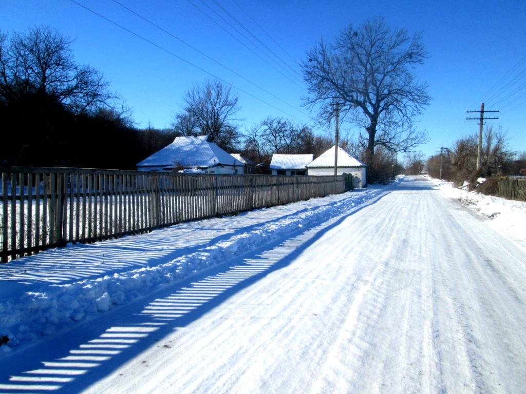 Beautiful photo winter