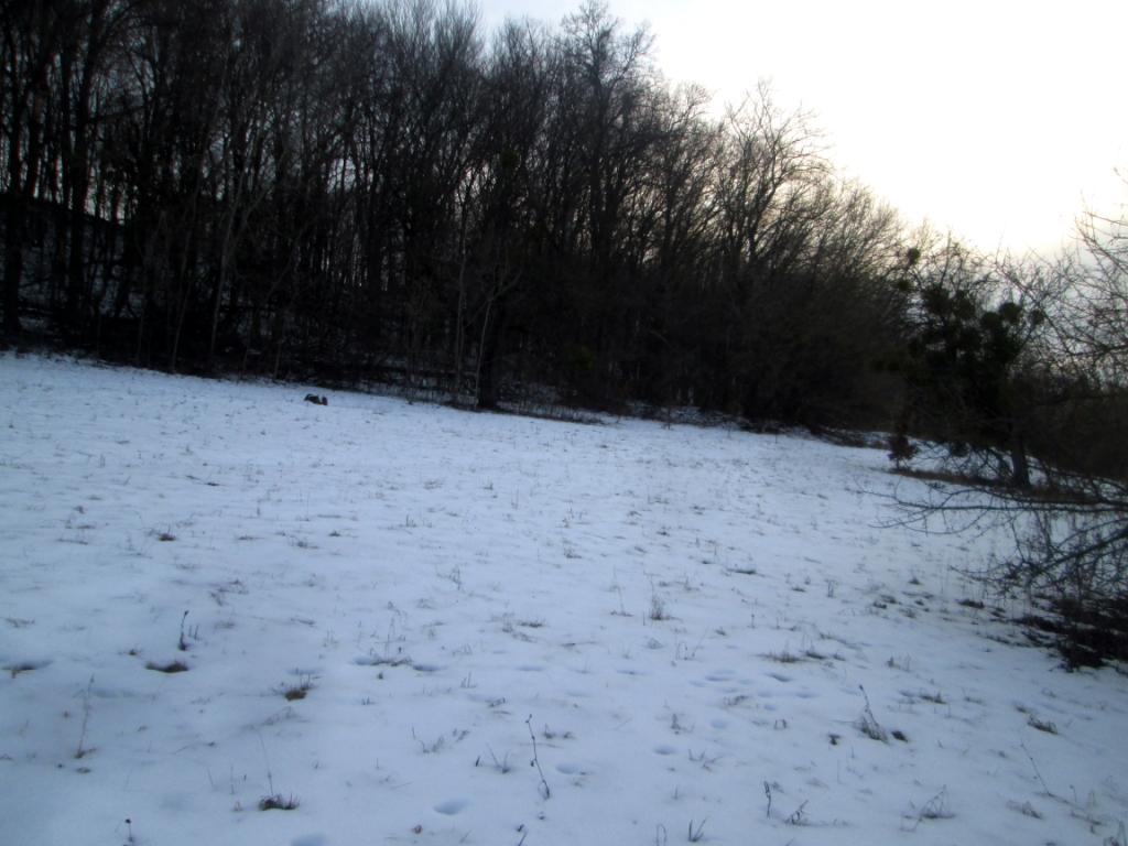 Beautiful photos of winter