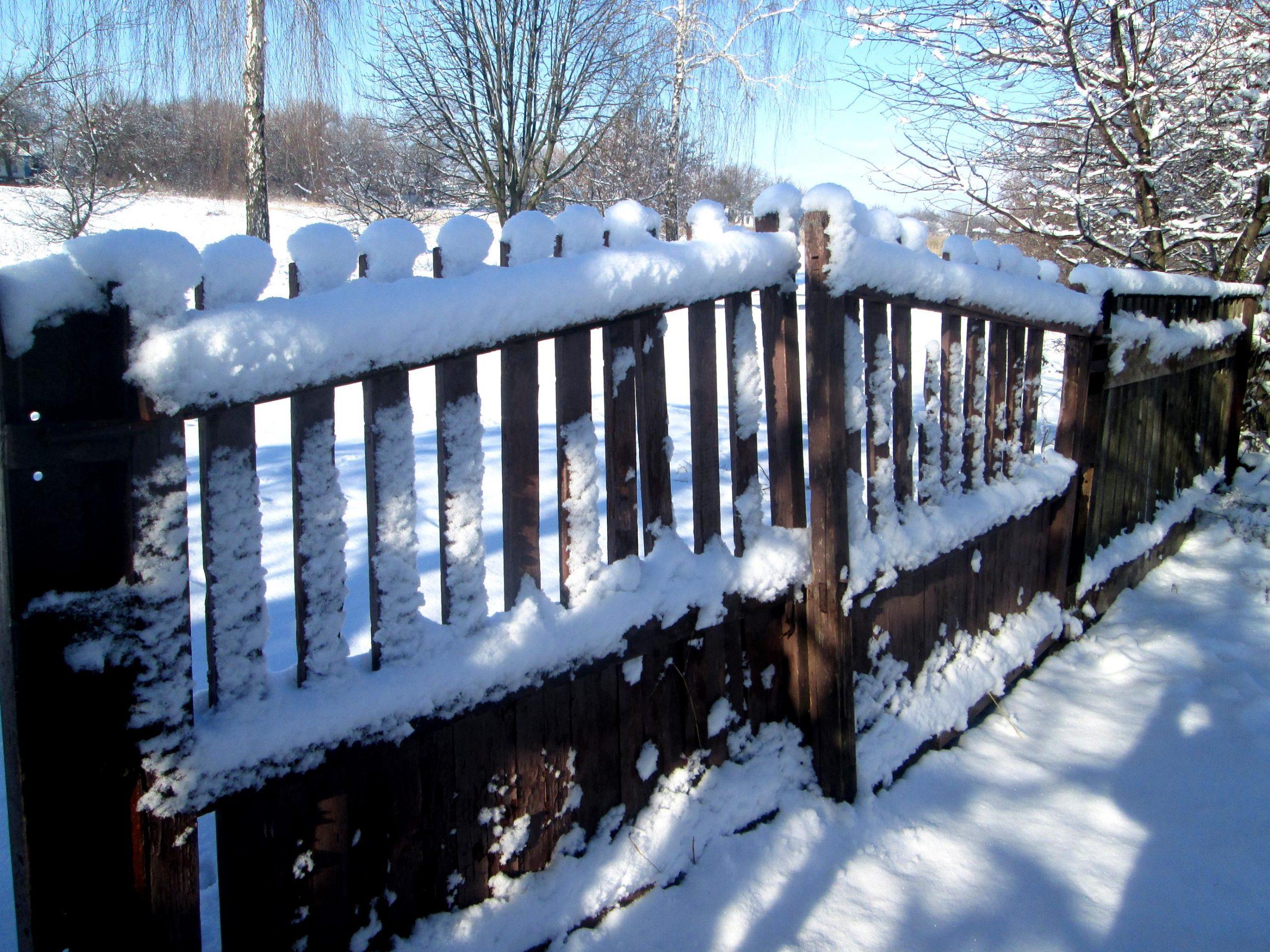 Snowfall photo