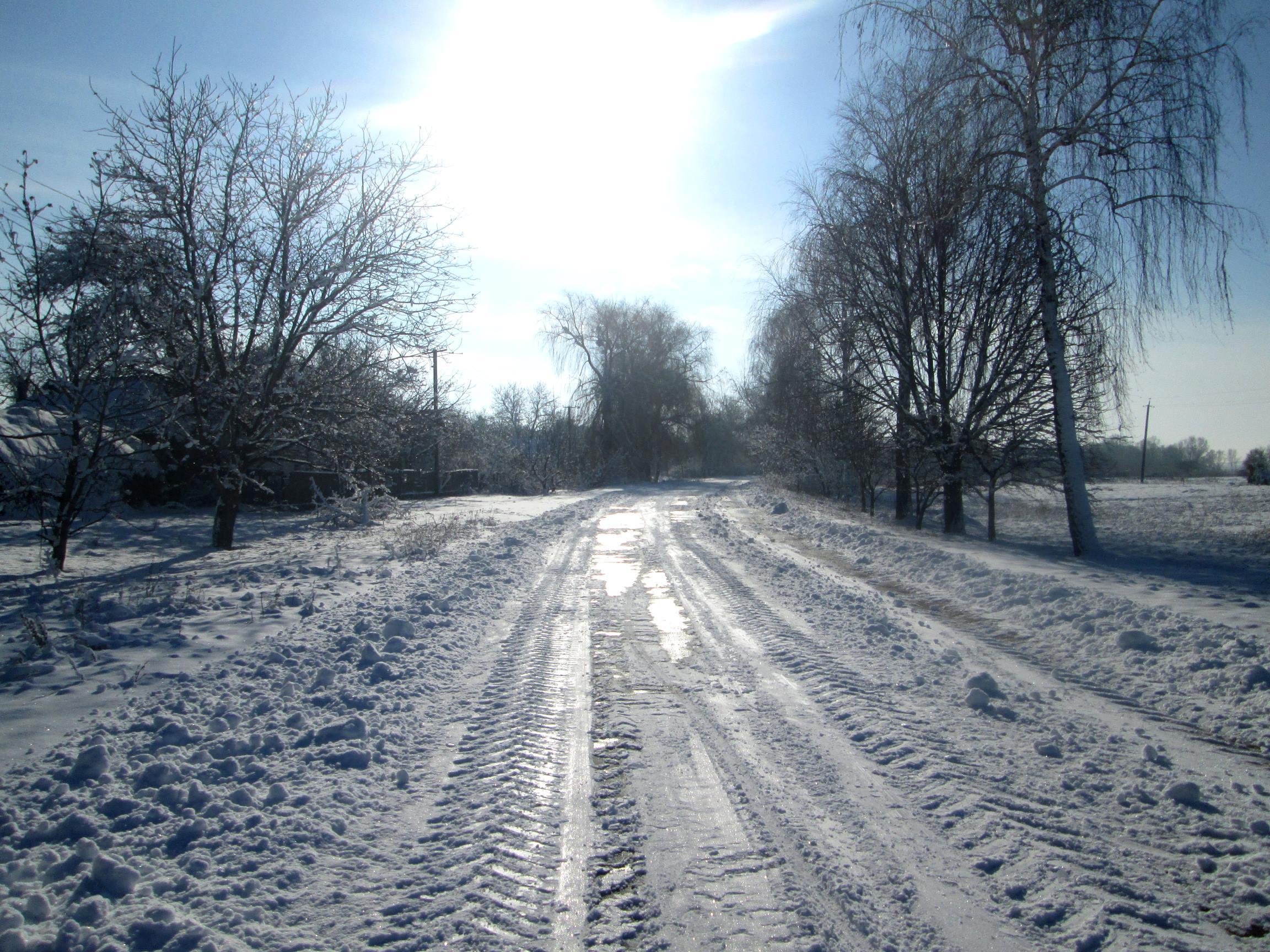 Winter in the village photo