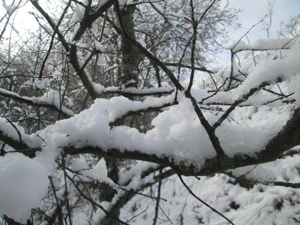 снег весной фото (34)