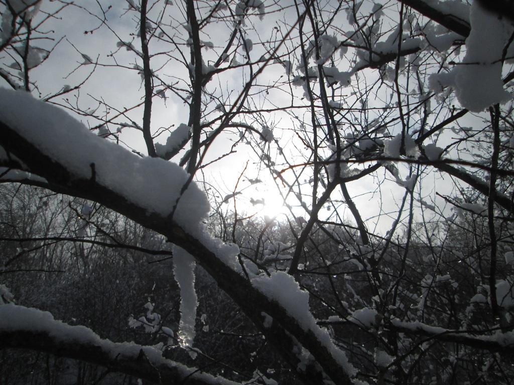снег весной фото (35)