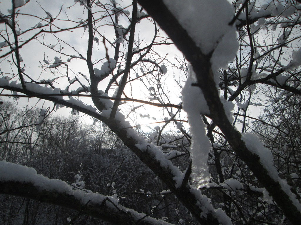 снег весной фото (36)
