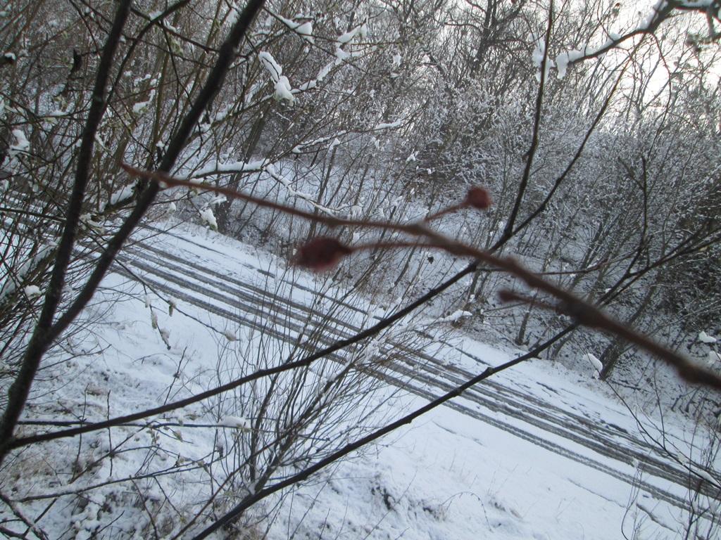 снег весной фото (51)