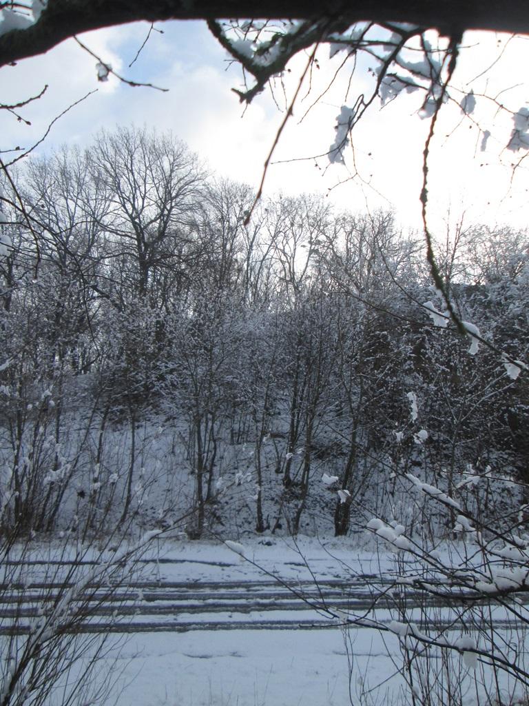 снег весной фото (52)