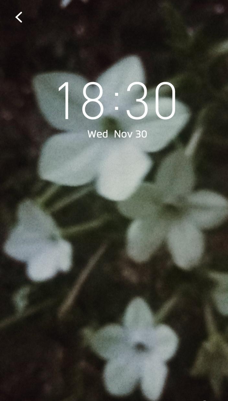 Desktop wallpaper autumn